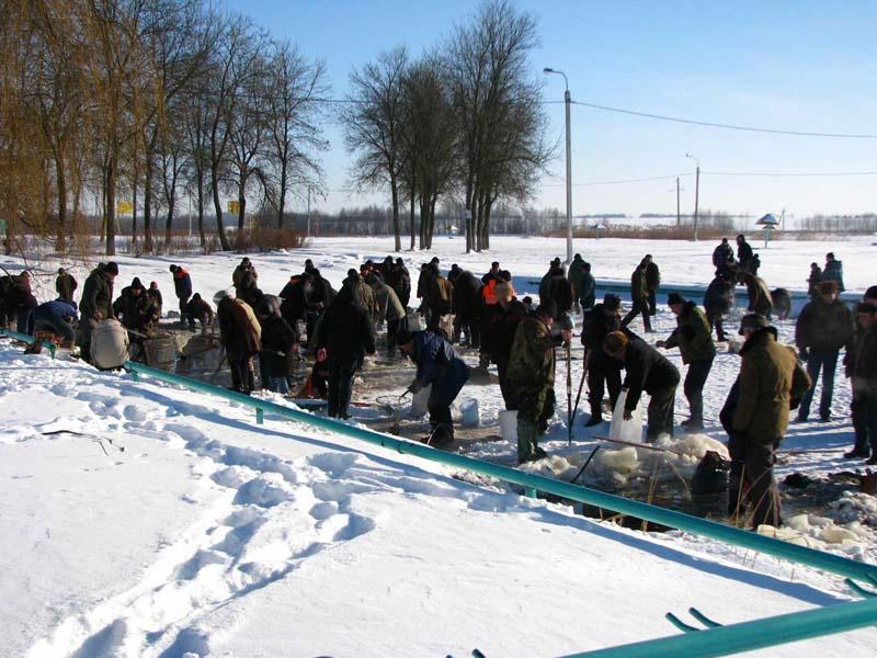 На пружанских озёрах начались заморы