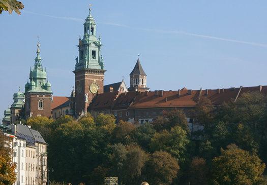 Увидеть Краков и заплакать. Активисты областной организации общества Красного Креста посетили Польшу