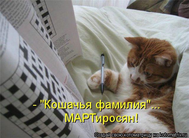 kotomatritsa_5r