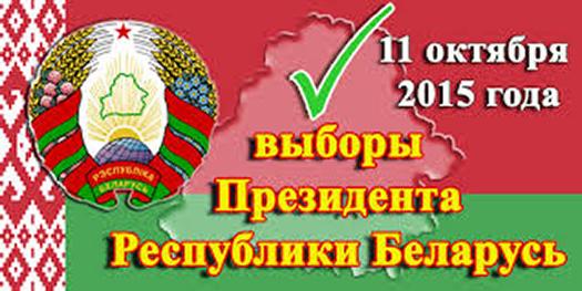 выборы 11