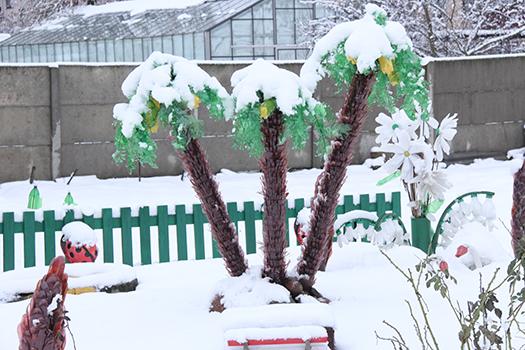 Зима 29