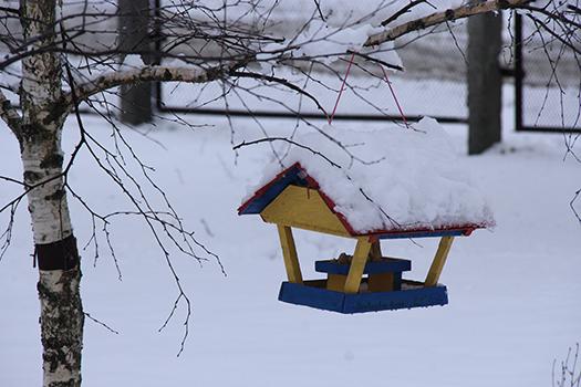 Зима 37
