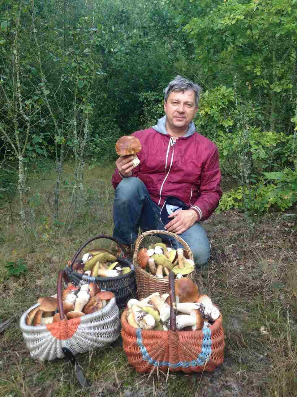 Фотофакт: щедрый пружанский лес