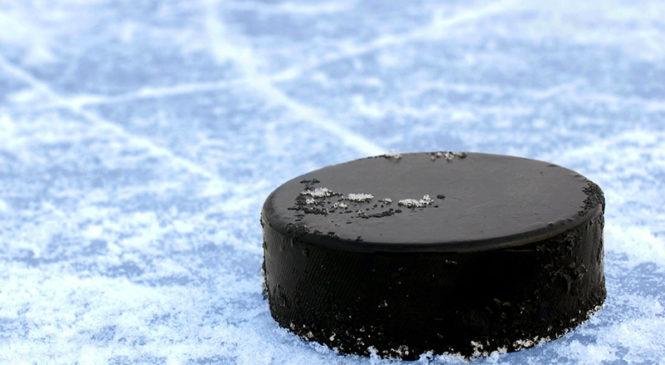 Милиция приглашает на … хоккей!