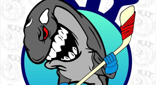 «Пружанские киты» vs «Кобрин». 21 января в Ледовом дворце