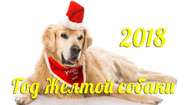 Собери символ года и узнай призера конкурса