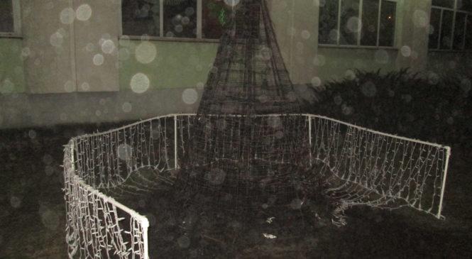 Возле универмага сгорела елка. Среди версий — замыкание и вандализм