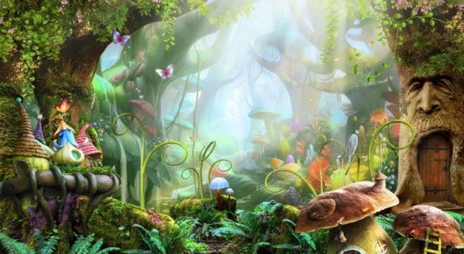 Ягодки, грибочки и волшебные цветочки… Снят запрет на посещение лесов!