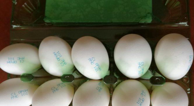 800 тысяч яиц с надписью «МЧС 101» выпустила Оранчицкая птицефабрика