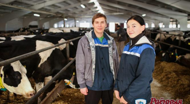 Молодые ветеринары ОАО «Агро-Колядичи»: «Молоко класса «экстра» можно получить только от здоровой коровы»