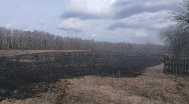 На территории района за прошедшие «большие» выходные произошел пожар, спасатели пять раз выезжали на тушение сухой травы и мусора