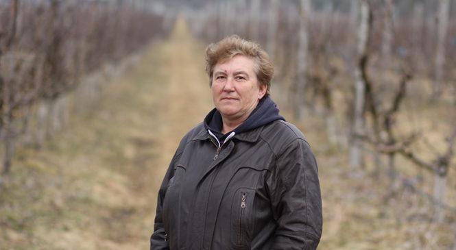 Начальник сада Ирина Черепенько рассказала о яблочном рекорде «Журавлиного» и своей жизни