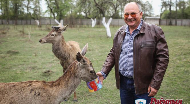 Рядом с Ружанами открылся зоосад «Золотой фазан»