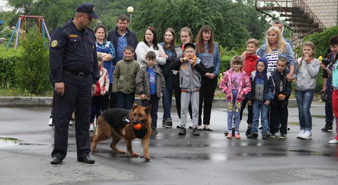 Накануне Дня защиты детей приют посетили милиционеры с … собаками