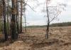 Запрет на посещение леса глазами работника РОЧС. Берегите природу!