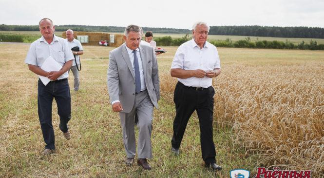 Ход уборочной в ОАО «Отечество» оценил Михаил Мясникович