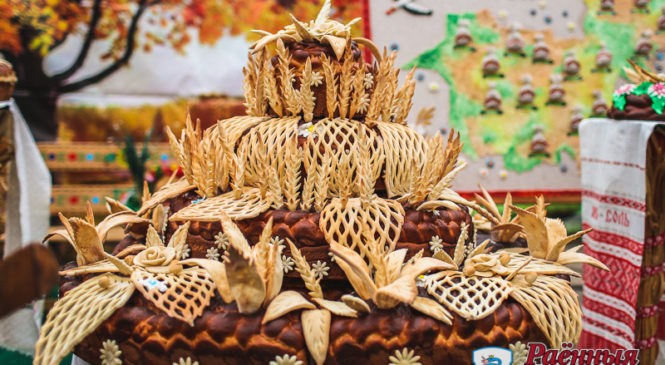 Пружанский район занял второе место в областном соревновании на уборке зерновых и зернобобовых культур!