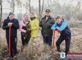 «Лесной» студотряд принял участие в посадке леса