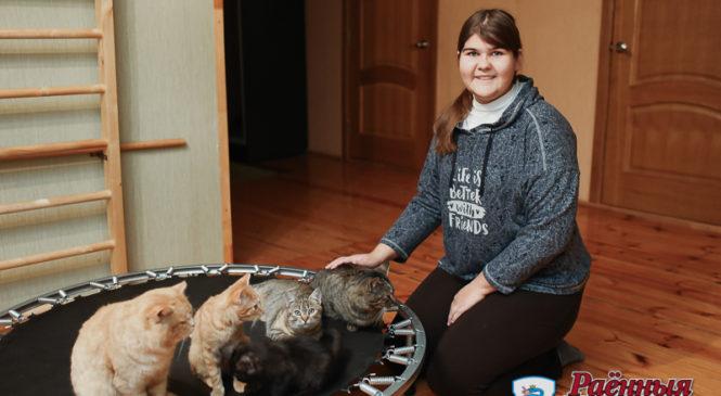 Хозяйка девяти котов: «Мы никого не искали специально»