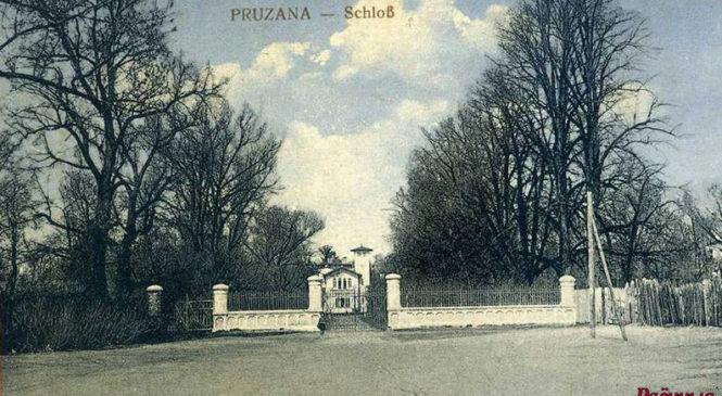 Гісторыя з фатаграфіяй: палацык у 1916 годзе