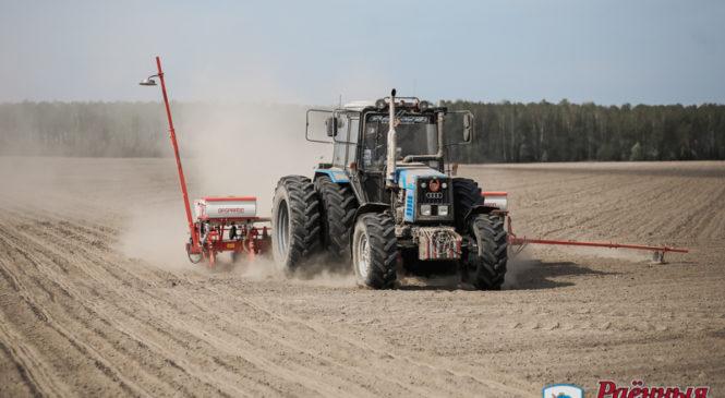 ОАО «Отечество» засеет кукурузой 3250 гектаров