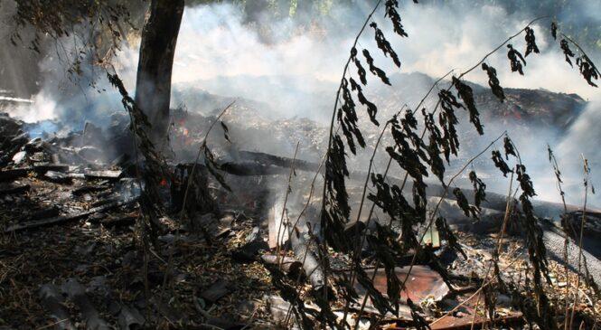 В Каштановке снова горели дрова