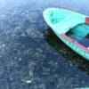 Вяртаемся да надрукаванага: возера надзеі?
