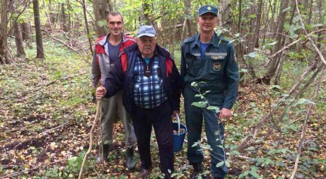В Пружанском районе заблудился грибник: понадобилась помощь спасателей